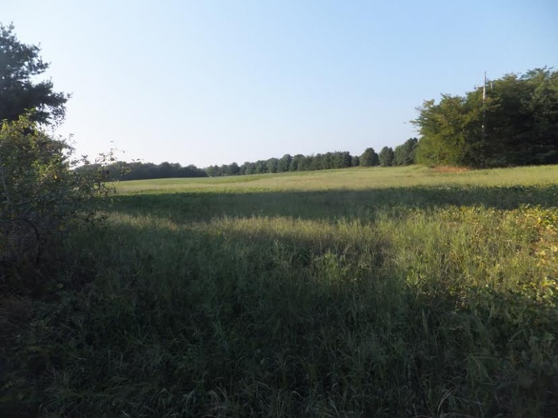Savanna,Carroll,Illinois,United States,Acreage,1100