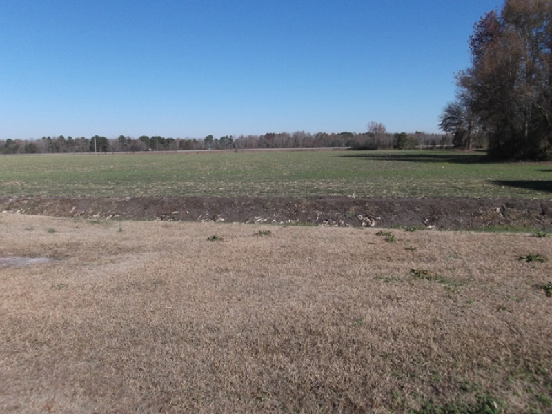 1818 Black Swamp Rd,Lumberton,Robeson,North Carolina,United States 28360,Acreage,Black Swamp Rd,1101