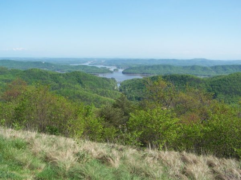 Lot #155,Norris Lake,Claiborne,Tennessee,United States,Acreage,1107