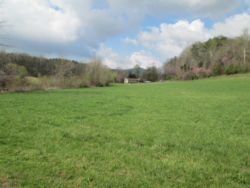 Cosby,Cocke,Tennessee,United States 37722,Acreage,1125