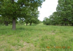 Farm Road 2140,Cassville,Barry,Missouri,United States 65625,Acreage,Farm Road 2140,1154