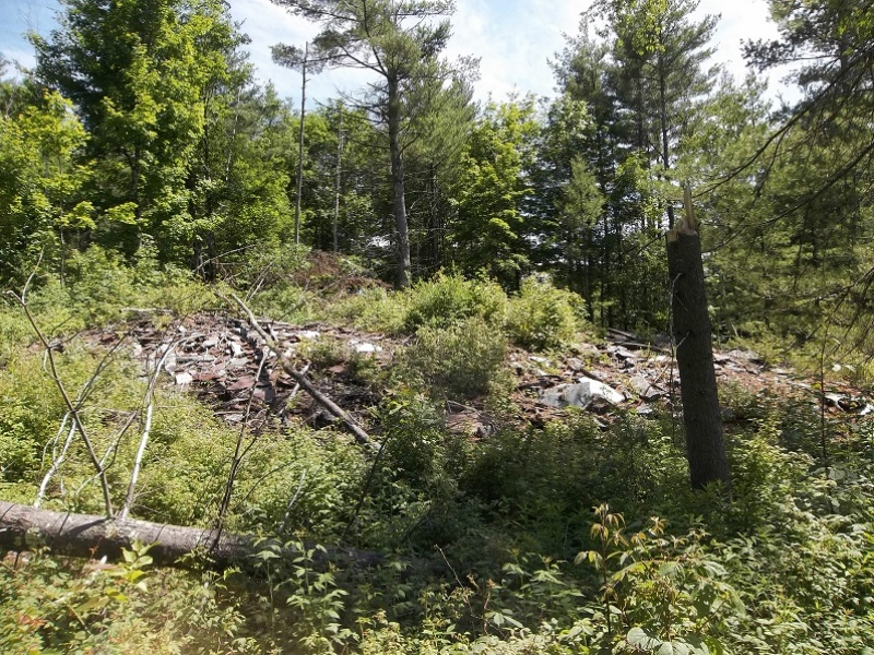 82 Stoddard Rd,Middle Granville,Washington,New York,United States 12837,Acreage,Stoddard Rd,1164