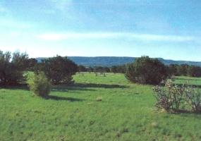 Golf Course Rd.,Mountainair,Torrance,New Mexico,United States 87036,Acreage,Golf Course Rd.,1201