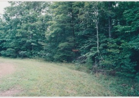 143 Cedarbrush Ln,Fairfield Glade,Tennessee,United States 38558,Vacant Lot,Cedarbrush Ln,1233