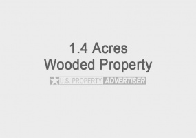 Fern Ave,Springville,Adams,Wisconsin,United States 53936,Vacant Lot,Fern Ave,1256
