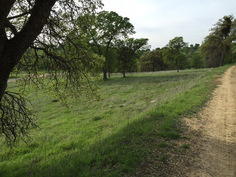 3550 Bear River Rd.,Lincoln,Placer,California,United States 95648,Acreage,Bear River Rd.,1264