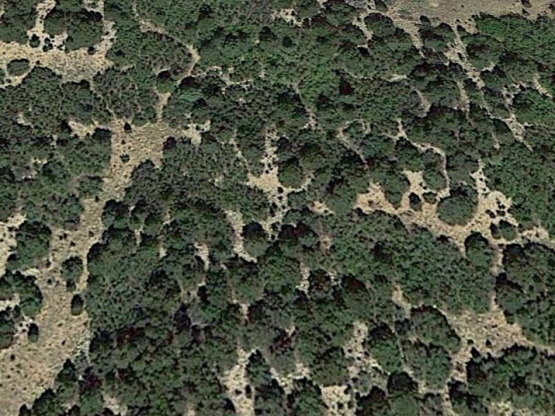 Gardner,Colorado,United States 81040,Acreage,1277