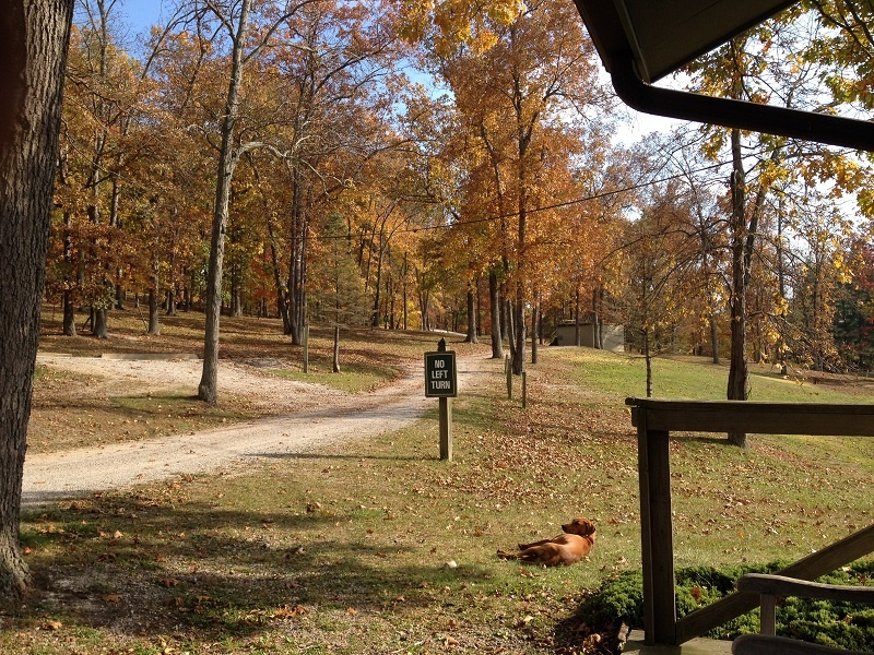 974 Standpipe Rd,Jackson,Ohio,United States 45640,Acreage,Standpipe Rd,1280