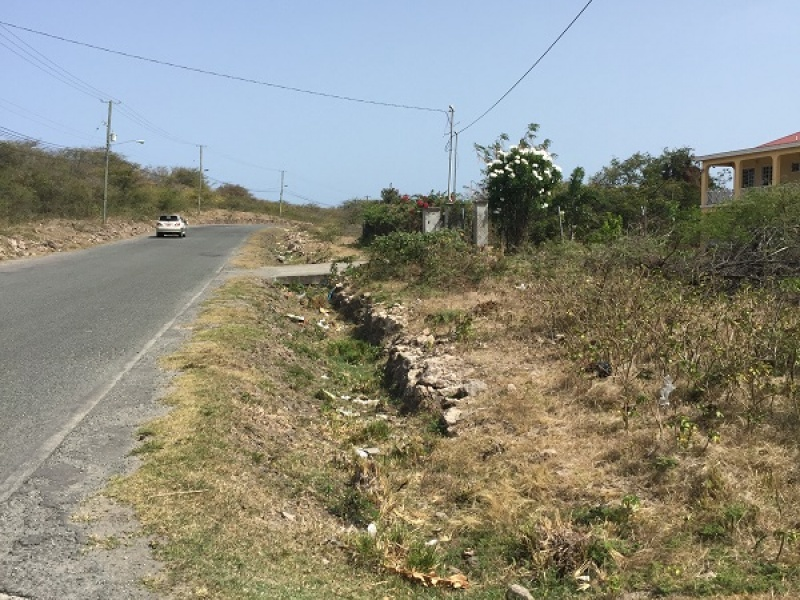 Saint John Capisterre Parish,St. Kitts and Nevis,Vacant Lot,1299