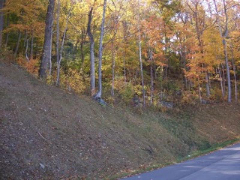Lot 38 Granite Ridge Dr.,Jefferson,Ashe,North Carolina,United States 28640,Vacant Lot,Granite Ridge Dr.,1324