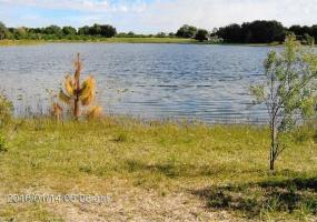 Beasley Rd.,Umatilla,Lake,Florida,United States 32784,Land,Beasley Rd.,1330