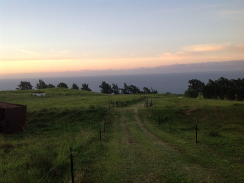 36370 Spencer Rd.,Laupahoehoe,Hawaii,United States 96764,Land,Spencer Rd.,1346