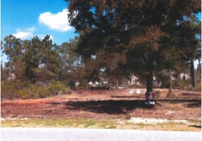 Lot 6 Martinique Circle,Orange Beach,Baldwin,Alabama,United States 36561,Vacant Lot,Martinique Circle,1363