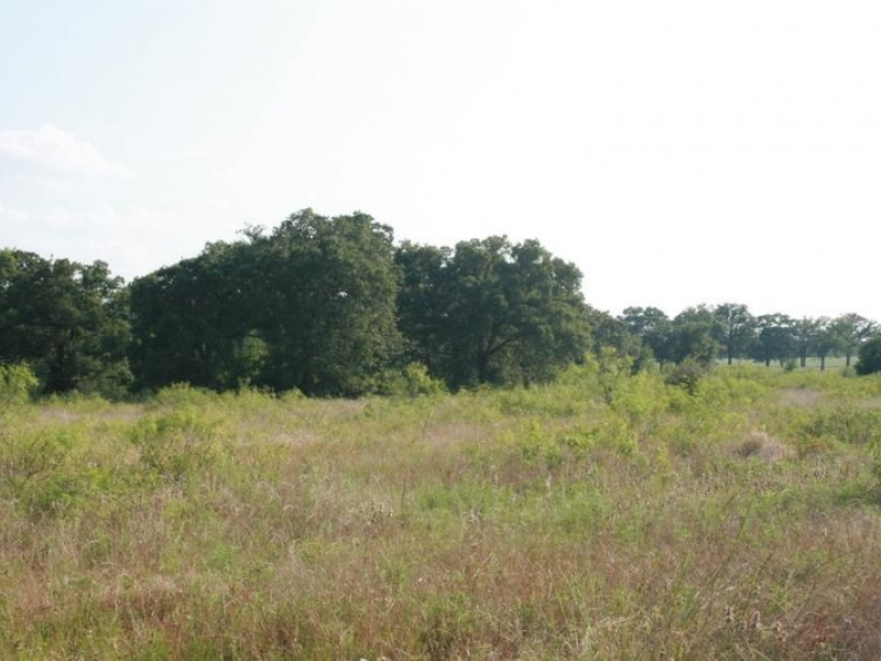 9028 County Road 455,Lexington,Milam,Texas,United States 78947,Acreage,County Road 455,1377