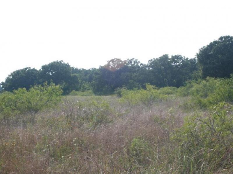 9028 County Road 455,Lexington,Milam,Texas,United States 78947,Acreage,County Road 455,1377