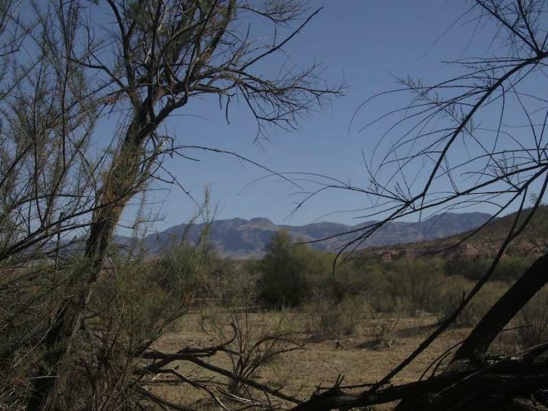 37895 S Reddington Rd,San Manuel,Pinal County,Arizona,United States 85631,Acreage,S Reddington Rd,1381