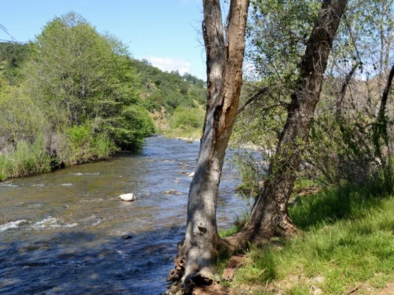 Ishi Rd,Igo,Shasta County,California,United States 96047,Acreage,Ishi Rd,1390