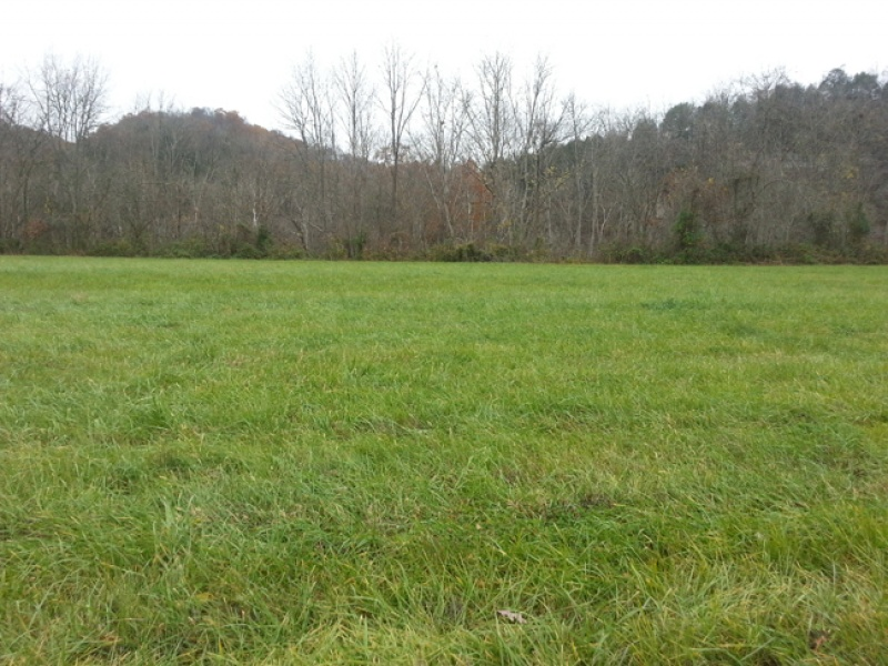 Salt Lick Bend,Cumberland,Kentucky,United States 40371,Vacant Lot,1040