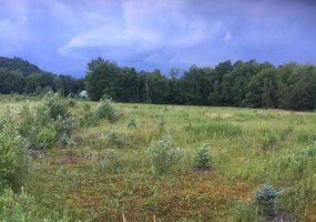Lot 4 Battle Row Rd,Hyde Park,Lamoille County,Vermont,United States 05655,Vacant Lot,Battle Row Rd,1419