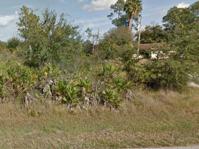1001 Dayton Ave.,Lehigh Acres,Lee County,Florida,United States 33972,Vacant Lot,Dayton Ave.,1429