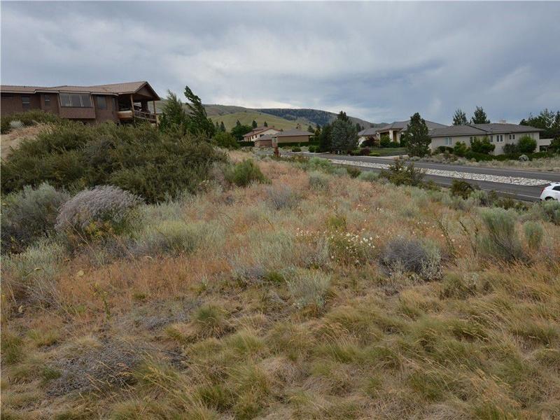 203 Desert Canyon,Orondo,Washington,United States 98843,Vacant Lot,Desert Canyon,1475