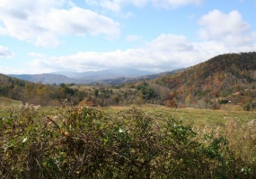725 Jess Cove Rd,Fines Creek,Haywood,North Carolina,United States 28721,Land,Jess Cove Rd,1483