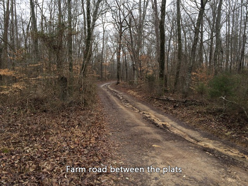 King Rd,Morrison,Warren,Tennessee,United States 37357,Acreage,King Rd,1484