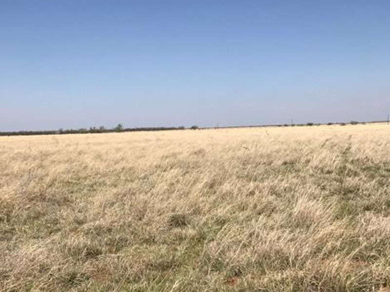 County Rd 339,Spur,Texas,United States 79370,Acreage,County Rd 339,1497