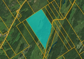 593 Maple Ridge Rd,De Kalb Junction,St. Lawrence,New York,United States 13681,Acreage,Maple Ridge Rd,1502