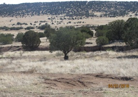 8489 N County Rd,Concho,Apache,Arizona,United States 85924,Acreage,N County Rd,1515