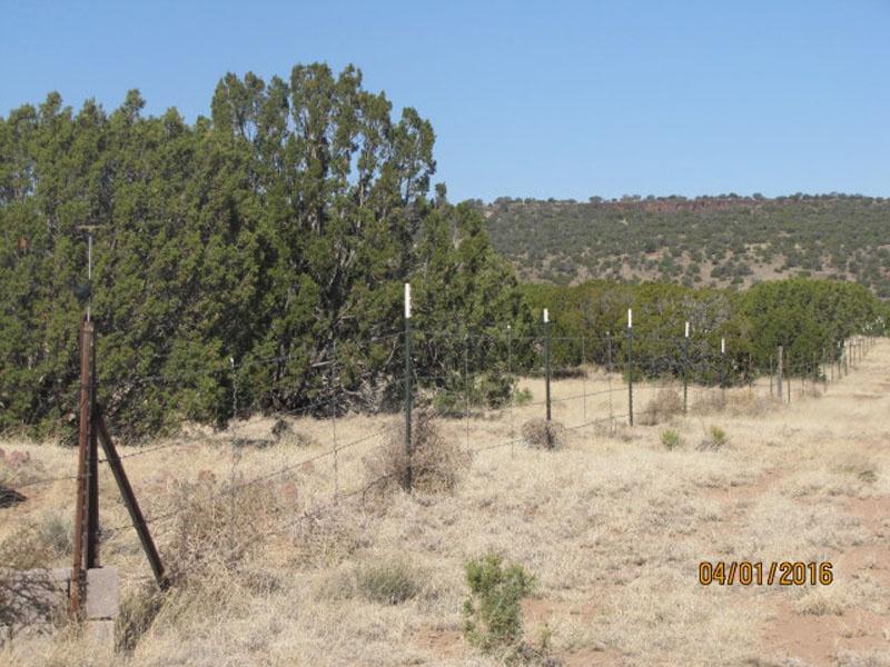 8489 N County Rd,Concho,Apache,Arizona,United States 85924,Acreage,N County Rd,1515