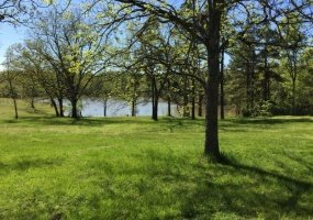 Wolf Rd,Dolph,Fulton / Izard,Arkansas,United States 72528,Acreage,Wolf Rd,1516