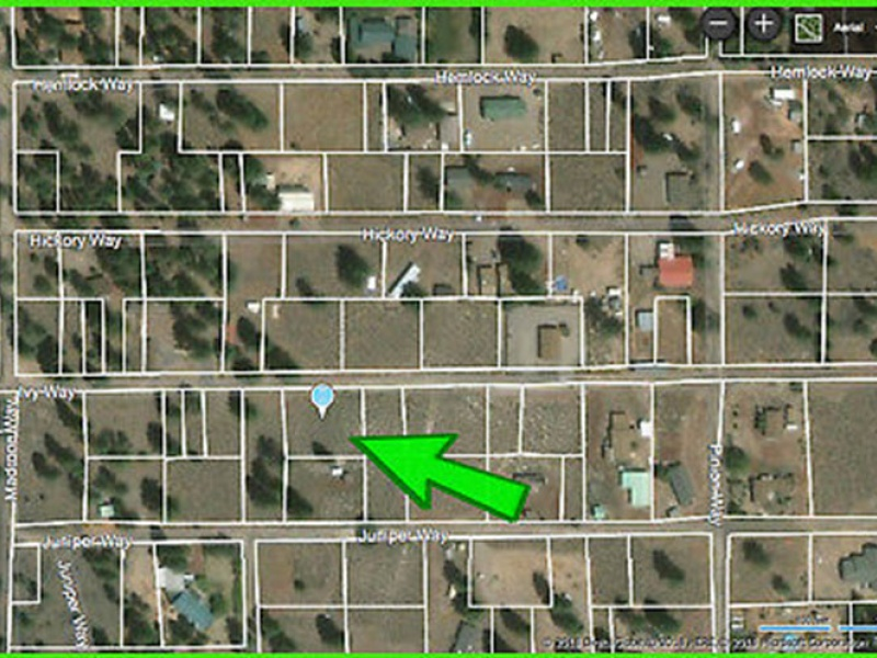 Ivy Way,Susanville,Lassen,California,United States 96130,Vacant Lot,Ivy Way,1539