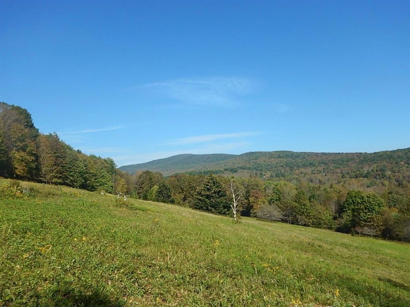 35520 State Hwy 28,Andes,Delaware,New York,United States 13731,Acreage,State Hwy 28,1551