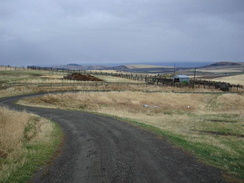 343 Wensman Rd,Cottonwood,Idaho,United States 83522,Acreage,Wensman Rd,1558