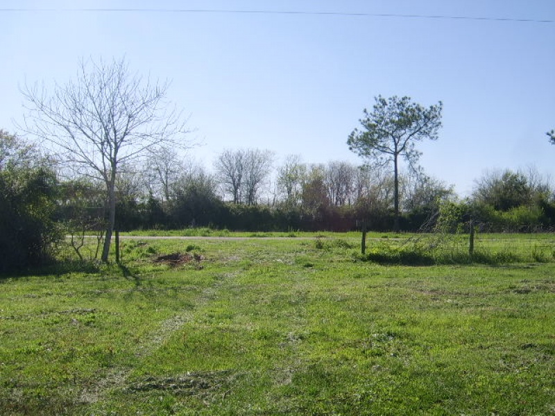 Manvel,Texas,United States 77578,Acreage,1057