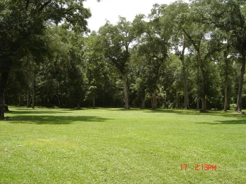 1542 FL 349,Old Town,Dixie,Florida,United States 32680,Acreage,FL 349,1058