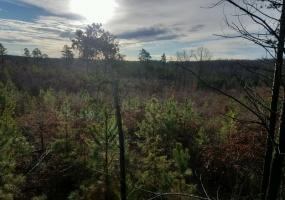 Poorhouse Creek Rd,Appomattox,Appomattox County,Virginia,United States 24522,Acreage,Poorhouse Creek Rd,1595