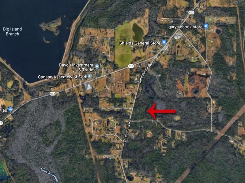 Saracennia Rd,Moss Point,Jackson,Mississippi,United States 39562,Acreage,Saracennia Rd,1601