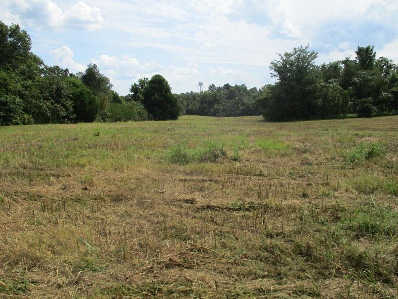 New Baymus Rd.,Olaton,Ohio County,Kentucky,United States 42361,Acreage,New Baymus Rd.,1607
