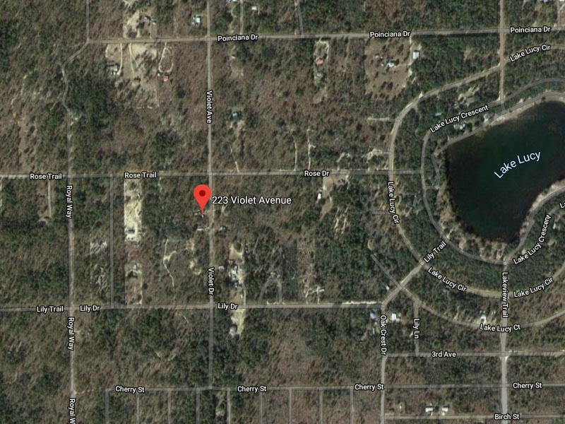 223 Violet Ave,Interlachen,Putnam County,Florida,United States 32148,Vacant Lot,Violet Ave,1617