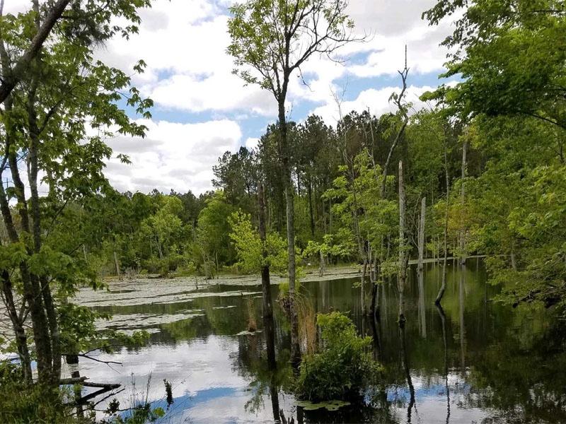 Old 30 Rd,Jacksonville,Onslow County,North Carolina,United States 28546,Acreage,Old 30 Rd,1628