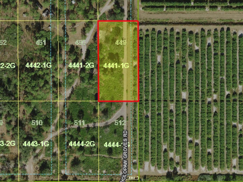 Holopaw Groves Rd.,Saint Cloud,Osceola,Florida,United States 34773,Vacant Lot,Holopaw Groves Rd.,1071