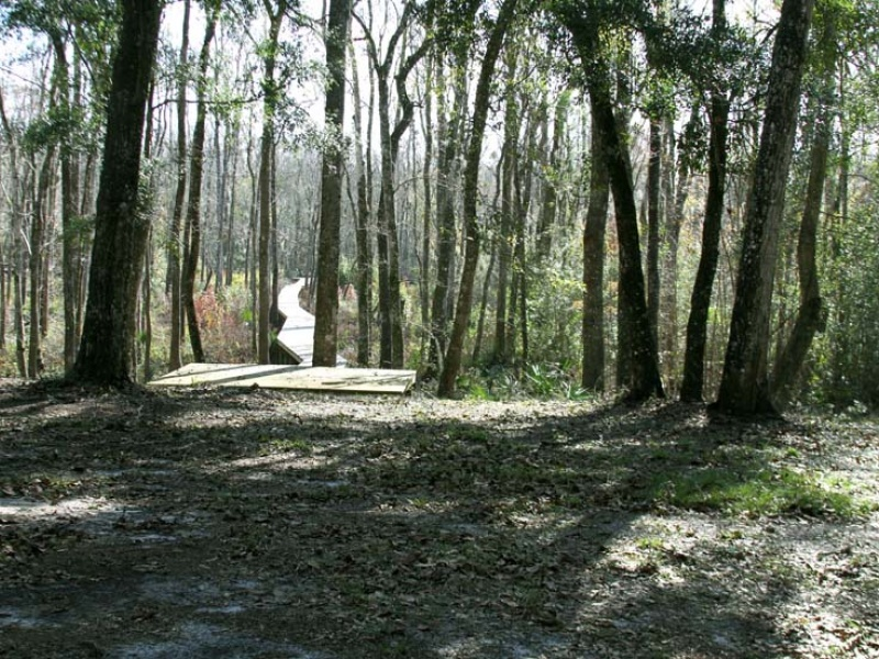 1500 Peters Creek Rd.,Green Cove Springs,Clay,Florida,United States 32043,Acreage,Peters Creek Rd.,1084