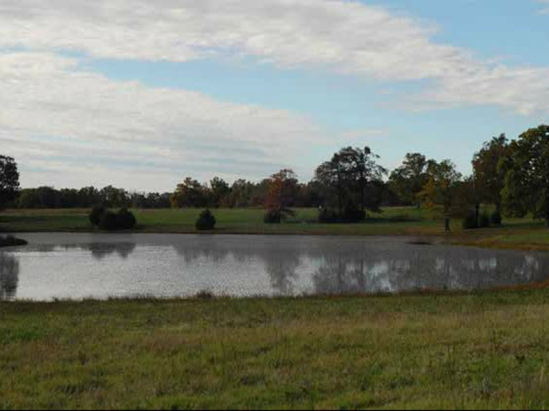Kingston,Arkansas,United States,Acreage,1095